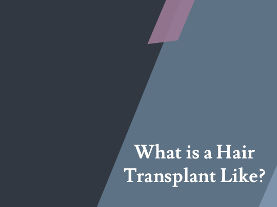 What is a Hair Transplant Like?